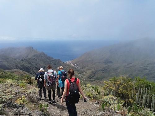 Tenerife: afwisseling en actie