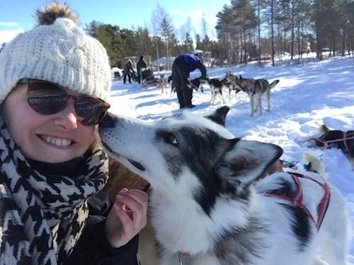 Magische rondreis in Zweeds Lapland