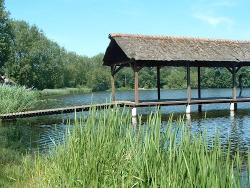 Betoverende wandeling door water en riet