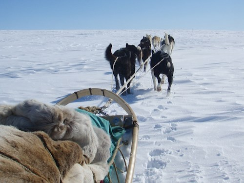 Husky-expeditie in Noors Lapland
