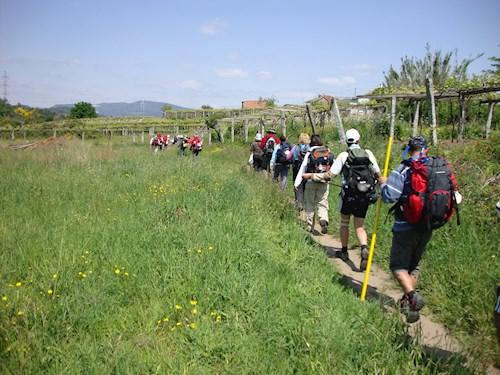 Langs de Portugese Camino