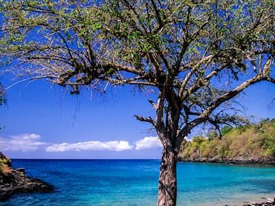 São Tomé: de Caraïben van Afrika