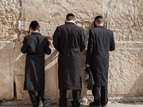Kleurrijk Mechelen & Chassidische joden in Antwerpen