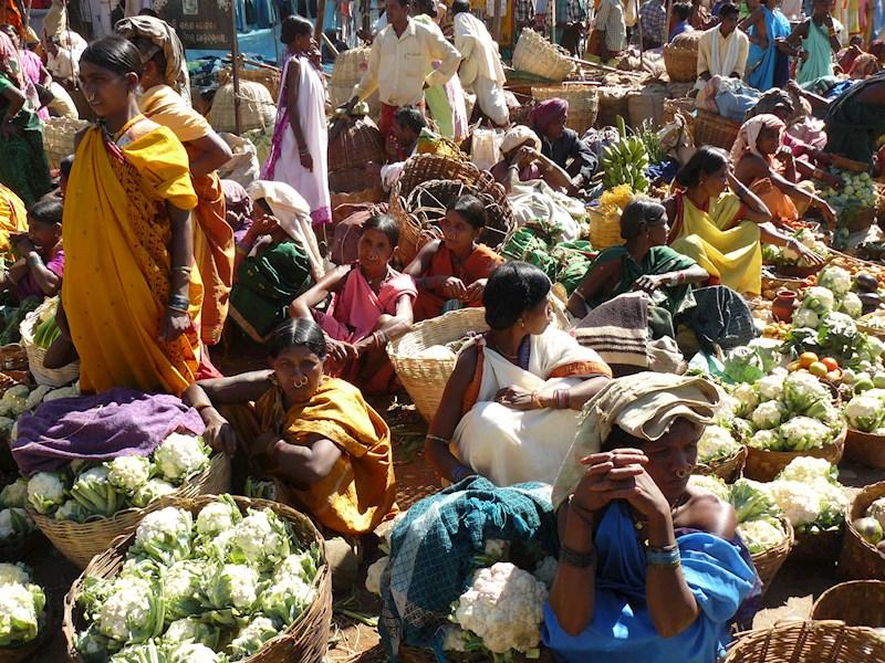 Oost-India: Odisha en Bengalen